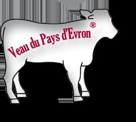 Image veau du pays d'évron